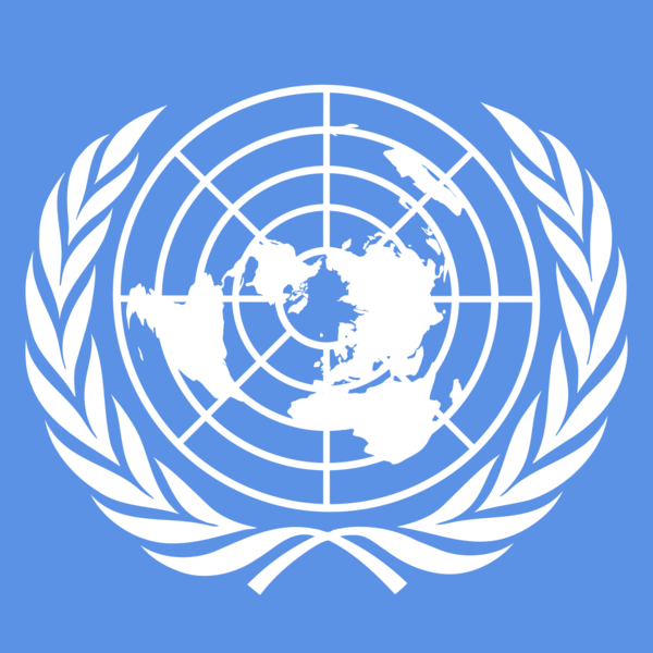 UN, Special Representative  of the Secretary-General  on Sexual Violence in Conflict